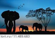 Купить «African sunset with elephants», фото № 11489683, снято 15 сентября 2019 г. (c) PantherMedia / Фотобанк Лори