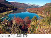 Купить «Autumn in Bariloche, Patagonia, Argentina», фото № 11526879, снято 21 февраля 2018 г. (c) PantherMedia / Фотобанк Лори