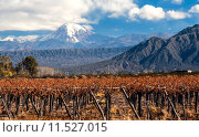 Купить «Volcano Aconcagua and Vineyard. Aconcagua is the highest mountain in the Americas at 6,962 m (22,841 ft). It is located in the Andes mountain range, in the Argentine province of Mendoza», фото № 11527015, снято 26 марта 2020 г. (c) PantherMedia / Фотобанк Лори