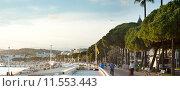 Купить «Cannes embankment», фото № 11553443, снято 23 марта 2019 г. (c) PantherMedia / Фотобанк Лори
