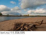 Коряги около Чулыма. Стоковое фото, фотограф Amir Navrutdinov / Фотобанк Лори