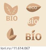 Купить «Ecology, organic icon set. Eco-icons», фото № 11614067, снято 19 июля 2019 г. (c) PantherMedia / Фотобанк Лори