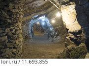 Купить «Gold mine tunnels», фото № 11693855, снято 23 марта 2019 г. (c) PantherMedia / Фотобанк Лори