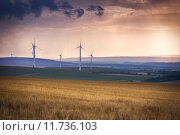 Купить «Wind generators near Alzey, Pfalz, Germany», фото № 11736103, снято 17 сентября 2018 г. (c) PantherMedia / Фотобанк Лори