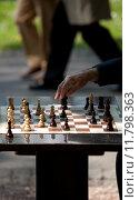Купить «chess player», фото № 11798363, снято 21 июля 2019 г. (c) PantherMedia / Фотобанк Лори