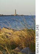 Купить «Skagen (Denmark) - Lighthouse Grey Tower in the evening», фото № 11801243, снято 24 января 2019 г. (c) PantherMedia / Фотобанк Лори