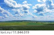 Купить «Летний пейзаж с пасмурным небом, timelapse», видеоролик № 11844019, снято 12 июля 2015 г. (c) Михаил Коханчиков / Фотобанк Лори
