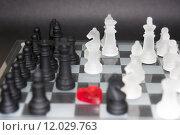 Купить «love chess», фото № 12029763, снято 21 июля 2019 г. (c) PantherMedia / Фотобанк Лори