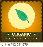 Купить «Vintage style organic poster. Vector illustration», иллюстрация № 12051379 (c) PantherMedia / Фотобанк Лори