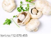 Купить «vegetarian mushrooms», фото № 12070455, снято 19 сентября 2019 г. (c) PantherMedia / Фотобанк Лори