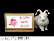 Купить «New Year greeting card or postcard with goat», фото № 12109719, снято 27 мая 2019 г. (c) PantherMedia / Фотобанк Лори
