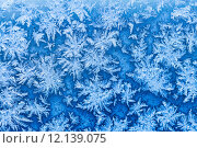 Купить «snowflakes and frost on window in winter close up», фото № 12139075, снято 17 июня 2019 г. (c) PantherMedia / Фотобанк Лори