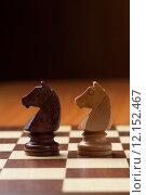 Купить «knights chess», фото № 12152467, снято 26 апреля 2019 г. (c) PantherMedia / Фотобанк Лори