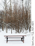 Купить «snow covered table on recreation ground», фото № 12161431, снято 26 июня 2019 г. (c) PantherMedia / Фотобанк Лори