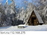 Купить «holiday vacation winter snow holidays», фото № 12168275, снято 17 июня 2019 г. (c) PantherMedia / Фотобанк Лори
