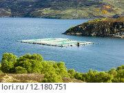 Купить «salmon farm, Loch a Chairn Bhain, Highlands, Scotland», фото № 12180751, снято 25 января 2020 г. (c) PantherMedia / Фотобанк Лори