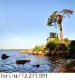 Купить «Бухта на берегу Финского залива», фото № 12271991, снято 22 июля 2019 г. (c) Зезелина Марина / Фотобанк Лори