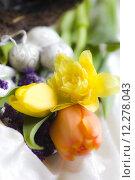 Купить «green yellow orange gorgeous purple», фото № 12278043, снято 25 марта 2019 г. (c) PantherMedia / Фотобанк Лори