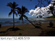 Купить «nosy be boat palm lagoon and coastline», фото № 12409519, снято 20 февраля 2019 г. (c) PantherMedia / Фотобанк Лори