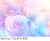 Gentle rose background. Стоковое фото, фотограф Anna Omelchenko / PantherMedia / Фотобанк Лори