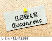 Купить «Recycled paper note pinned on cork board. Human Resources message. Concept Image», фото № 12412999, снято 19 сентября 2018 г. (c) PantherMedia / Фотобанк Лори