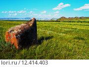 Летний пейзаж. Стоковое фото, фотограф Светлана Швенк / Фотобанк Лори