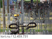 Купить «university holder dugout bikes bicycles», фото № 12459731, снято 27 июня 2019 г. (c) PantherMedia / Фотобанк Лори