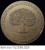 Купить «award medal distinction conservation of», фото № 12530323, снято 20 марта 2019 г. (c) PantherMedia / Фотобанк Лори