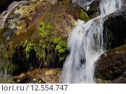 Водопад в камнях, поросших мхом. Стоковое фото, фотограф Алексей Шеремет / Фотобанк Лори