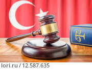 Купить «gavel and law book - turkey», фото № 12587635, снято 24 марта 2019 г. (c) PantherMedia / Фотобанк Лори