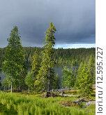 Купить «Северная природа перед грозой. Тучи и солнце», фото № 12595727, снято 5 июля 2015 г. (c) Валерия Попова / Фотобанк Лори