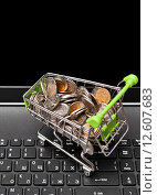 Купить «Магазинная тележка с российскими деньгами на клавиатуре ноутбука», фото № 12607683, снято 2 сентября 2015 г. (c) Элина Гаревская / Фотобанк Лори