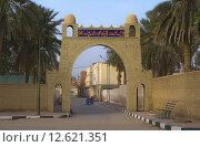Купить «towers tunisia medina altes stadttor», фото № 12621351, снято 25 мая 2019 г. (c) PantherMedia / Фотобанк Лори