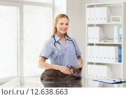 Купить «happy doctor with cat at vet clinic», фото № 12638663, снято 19 июля 2015 г. (c) Syda Productions / Фотобанк Лори