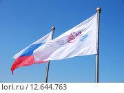 """Купить «Флаги. """"Восточный экономический форум"""". Владивосток», эксклюзивное фото № 12644763, снято 5 сентября 2015 г. (c) syngach / Фотобанк Лори"""