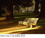 Скамейка в парке в лучах заходящего солнца. Стоковое фото, фотограф Нефедьев Леонид / Фотобанк Лори
