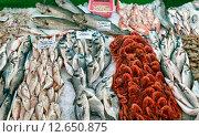 Свежевыловленная морская рыба на прилавке городского рынка. Город Кемер, Турция (2015 год). Стоковое фото, фотограф Bala-Kate / Фотобанк Лори