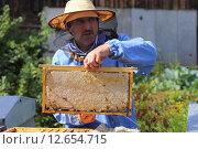 Рамка с медом из улья (2015 год). Редакционное фото, фотограф Анатолий Матвейчук / Фотобанк Лори