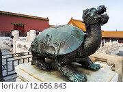 Черепаха в Запретном городе (2015 год). Редакционное фото, фотограф Павел Годин / Фотобанк Лори