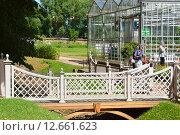 Купить «Декоративный мостик в Аптекарском огороде Ботанического Сада МГУ в Москве», эксклюзивное фото № 12661623, снято 6 августа 2015 г. (c) lana1501 / Фотобанк Лори