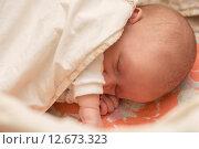 Купить «Новорожденный ребенок спит под одеялом», фото № 12673323, снято 14 января 2015 г. (c) Анастасия Улитко / Фотобанк Лори