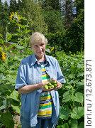 Купить «Пожилая женщина с огурцами на дачном участке», эксклюзивное фото № 12673871, снято 25 июля 2015 г. (c) Елена Коромыслова / Фотобанк Лори