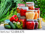 Купить «Jars of pickled vegetables and fruits in the garden», фото № 12684675, снято 16 марта 2018 г. (c) PantherMedia / Фотобанк Лори