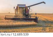 Комбайн убирает урожай пшеницы. Стоковое фото, фотограф Александр Власик / Фотобанк Лори