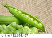 Купить «Свежий зеленый горошек», эксклюзивное фото № 12694467, снято 2 августа 2015 г. (c) Елена Коромыслова / Фотобанк Лори