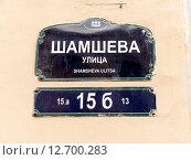 Адресная табличка с названием улицы на стене дома. Шамшева улица, Санкт-Петербург. Стоковое фото, фотограф Vladimir Sviridenko / Фотобанк Лори