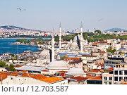 Вид сверху на Стамбул с мечетями и заливом Золотой Рог (2015 год). Стоковое фото, фотограф Наталья Волкова / Фотобанк Лори