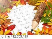 Купить «Русский алфавит, карандаш и осенние листья», фото № 12705199, снято 18 сентября 2015 г. (c) Наталья Осипова / Фотобанк Лори