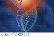 Купить «DNA molecule», иллюстрация № 12723751 (c) Sergey Nivens / Фотобанк Лори