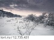 Зимний пейзаж. Стоковое фото, фотограф Алексей Елфимчев / Фотобанк Лори